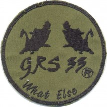 GRS 33 WHAT ELSE