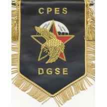 CPES DGSE