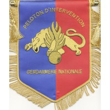PELOTON INTERVENTION GENDARMERIE MOBILE