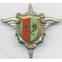 FORCES FRANCAISES EN Allemagne