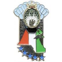 13° RDP KOWEIT 1991