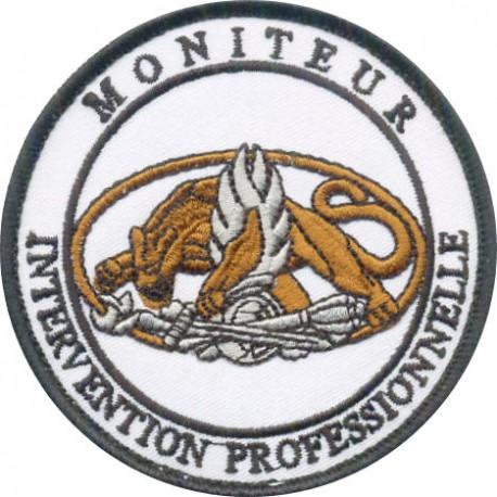 MONITEUR INTERVENTION PROFESSIONNELLE